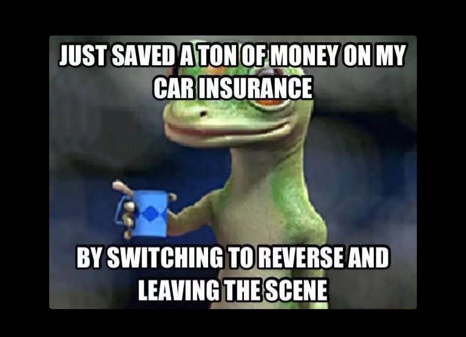 Funnies by katie roach car insurance insurance cheap