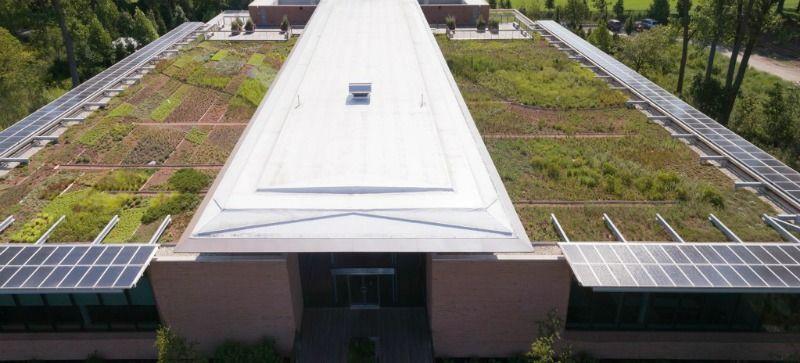 Jardín Botánico de Chicago evaluación de plantas para azoteas