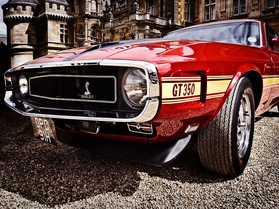 1969 Mustang Shelby Gt350 Cars Pinterest Mustang Ford Mustang