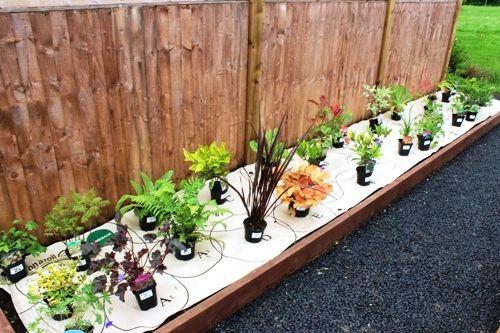 Win a garden on a roll!