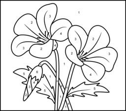Campanula Printable Color by Number Page Coloring