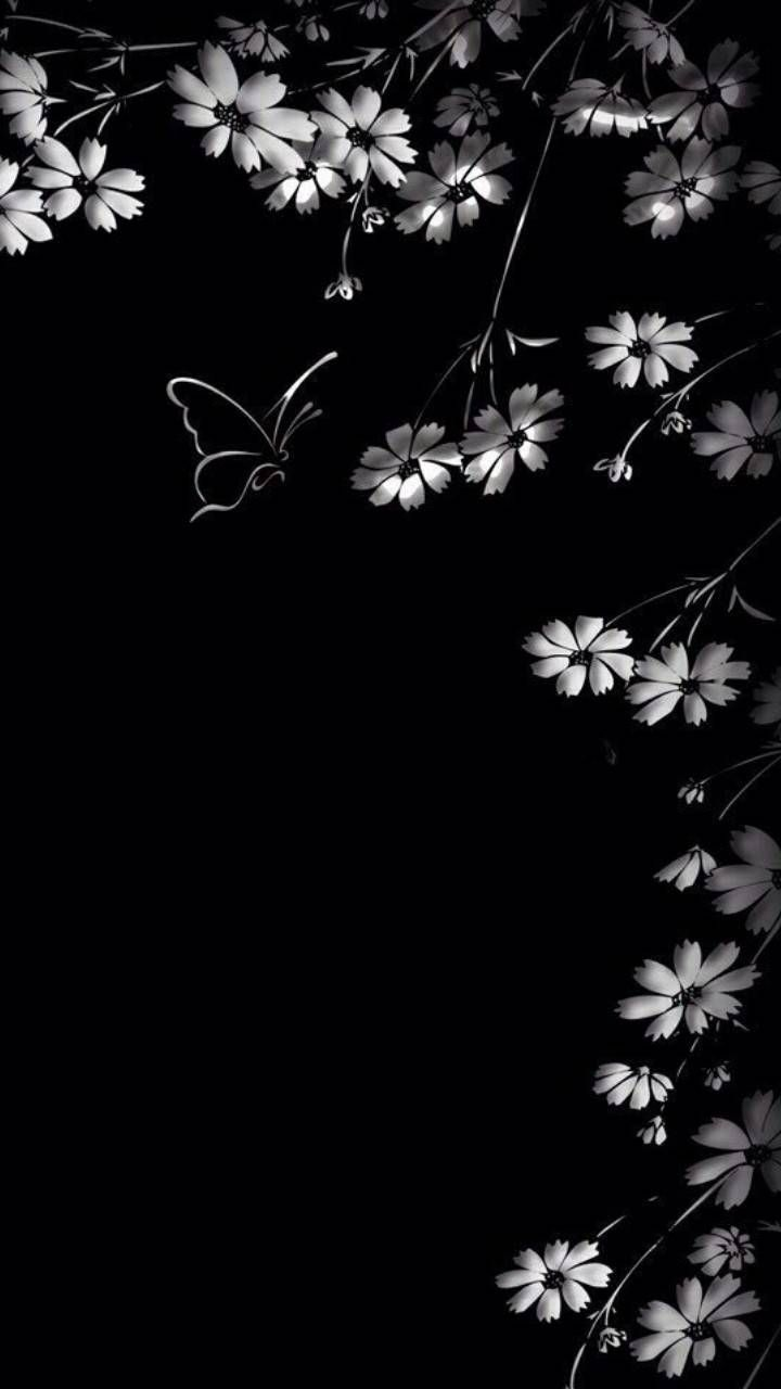 Black Wallpaper wallpaper by zzzhelle - bd - Free on ZEDGE™
