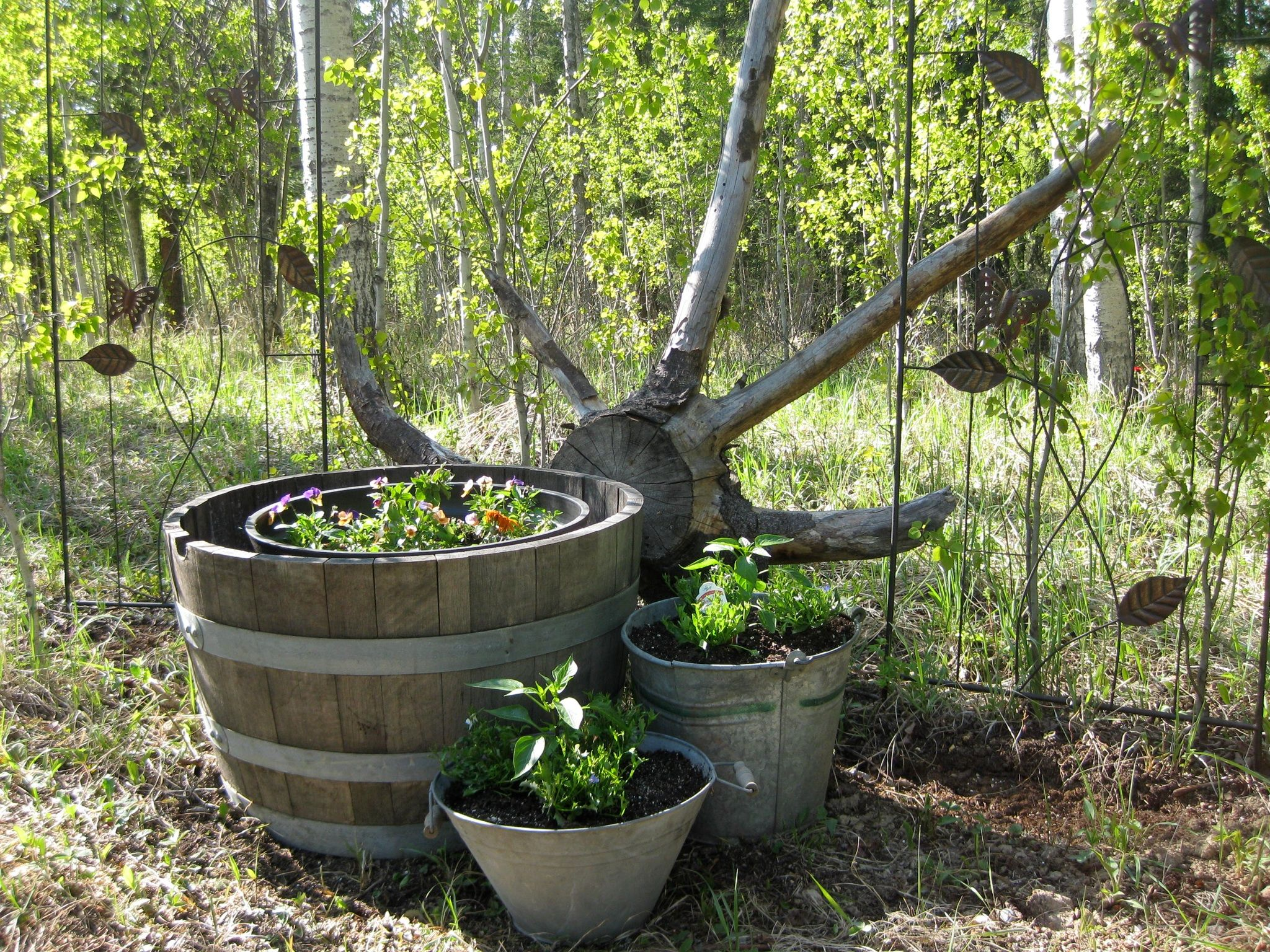 Rustic Planters Landscape Ideas Pinterest