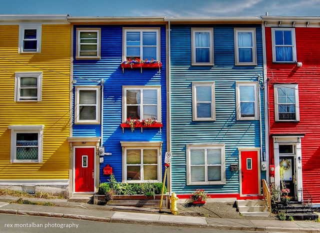 Jelly Bean Row >> Colourful Homes In St John S In 2019 Newfoundland Newfoundland