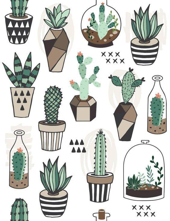 Resultado de imagen para cactus dibujo   Plantas   Pinterest