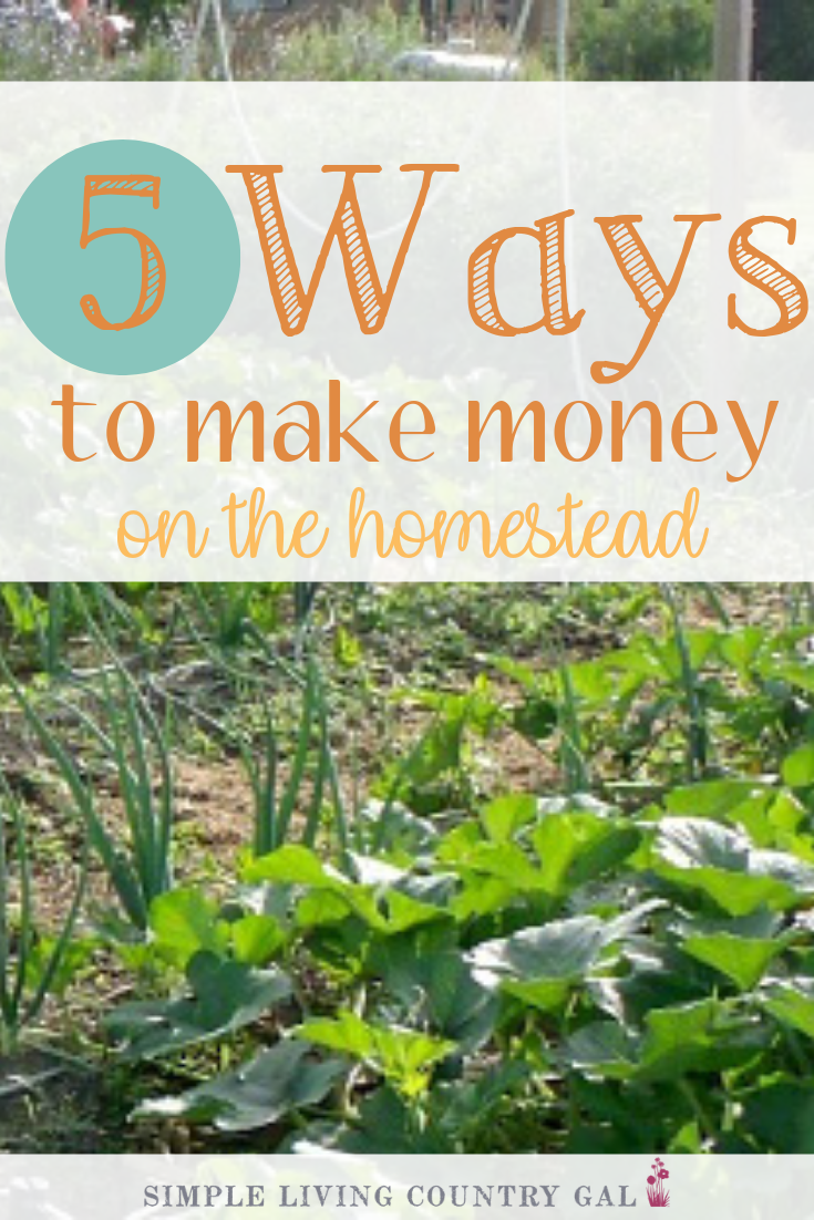How To Make Money Living In The Country