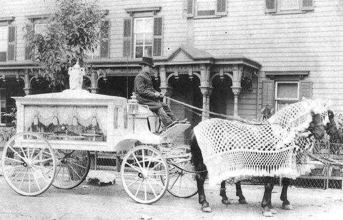 Horse - drawn hearse from the 1900s with Awesome Crocheted Fly Blankets!