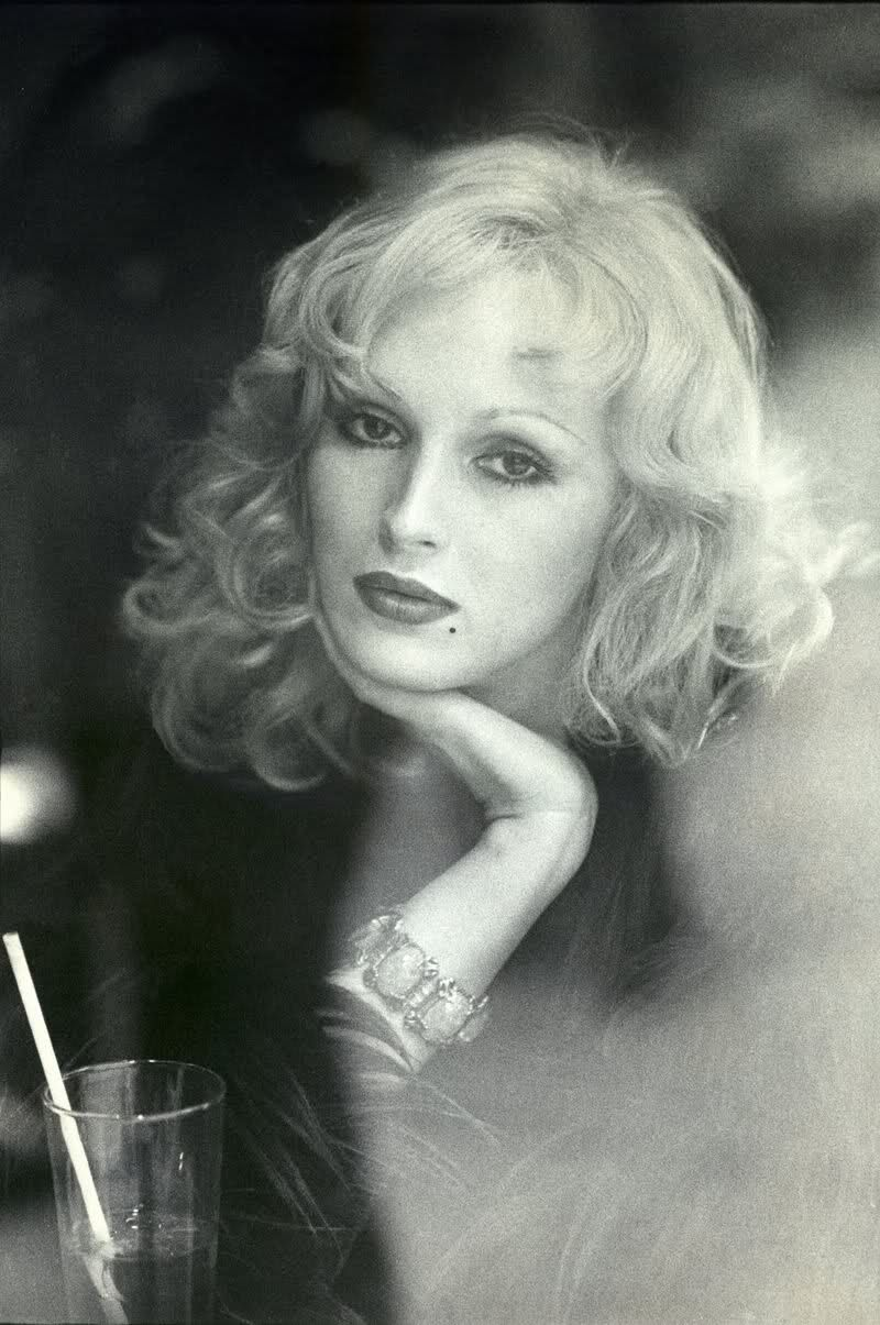Forum on this topic: Barbara D'Alterio (born 1990), candy-darling/