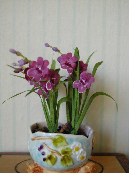 Orchid Mietonia Burgandy Kit by Pascale Garnier
