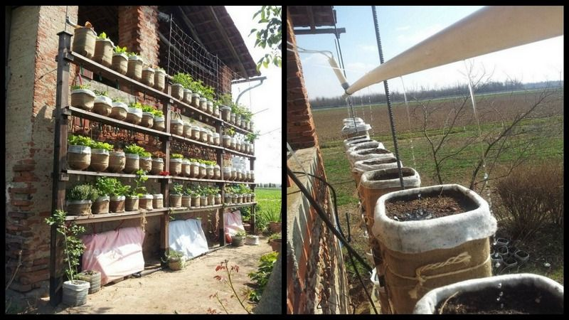 How To Build A Self Watering Vertical Garden Powered By