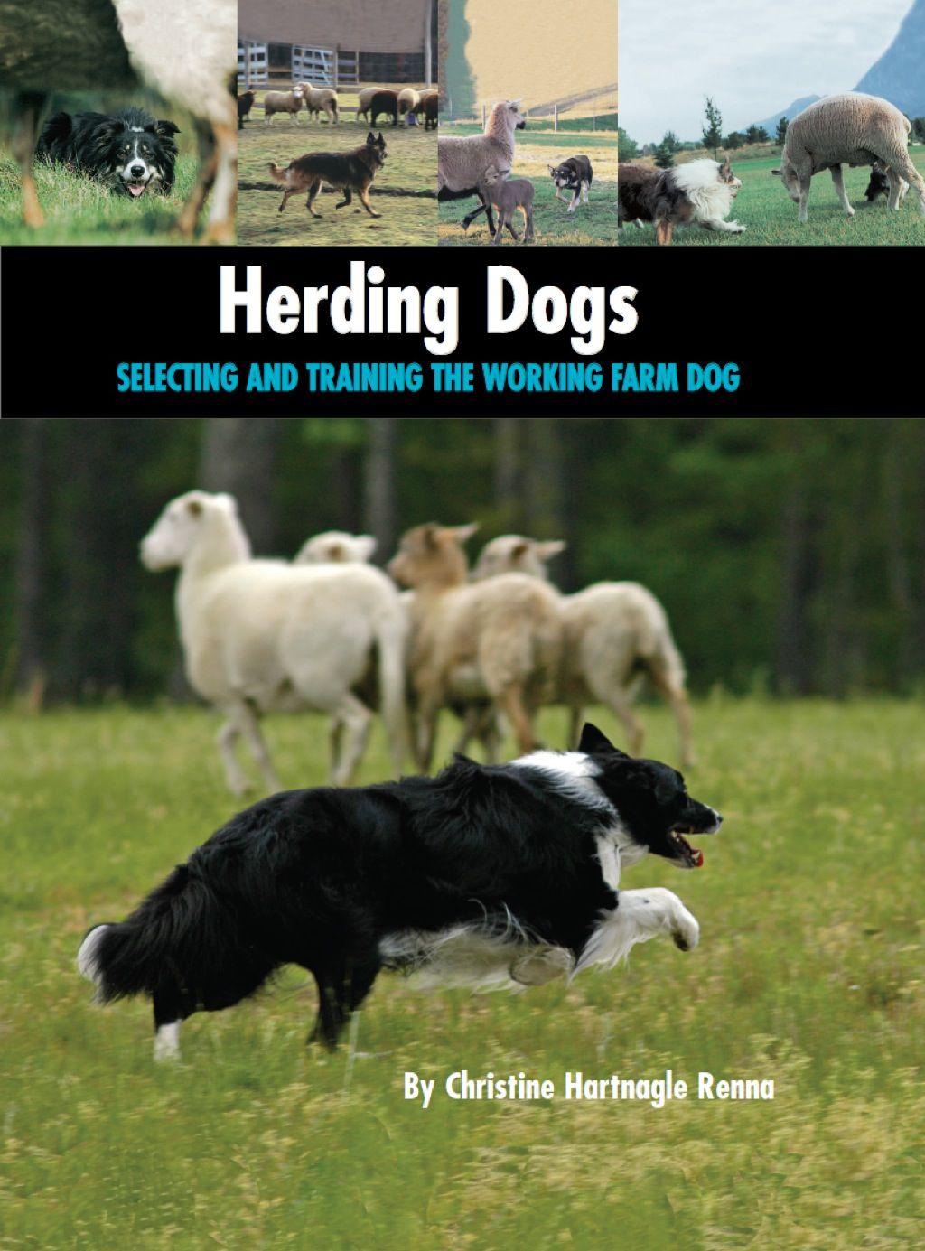 Herding Dogs Ebook In 2019 Herding Dogs Farm Dogs Dogs