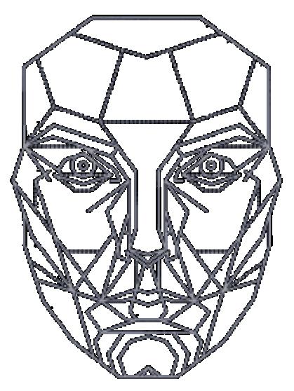 Face Golden Ratio Vitruvian Man Mathematics Mask Png Art Artwork Black And White Decagon Drawing Vitruvian Man Golden Ratio Art Face Outline