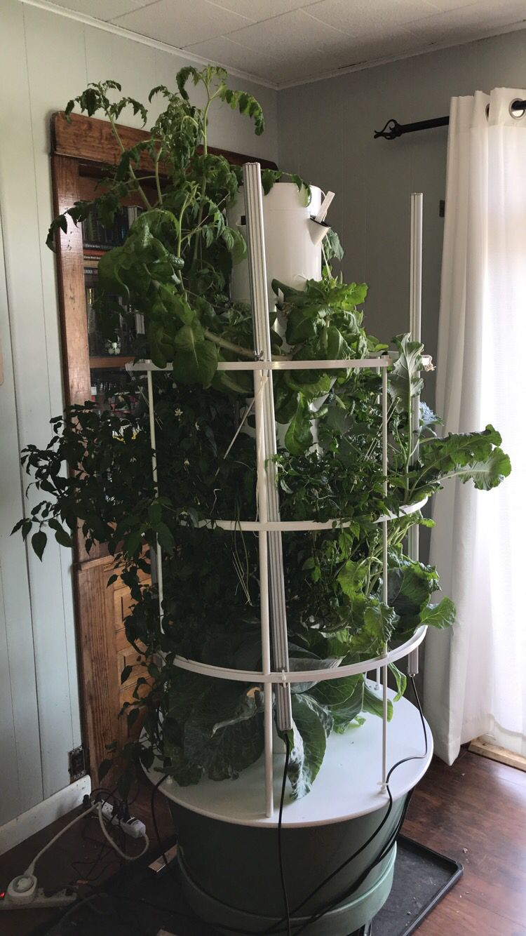 Just A Full Length View Of What Our Tower Garden Currently Looks