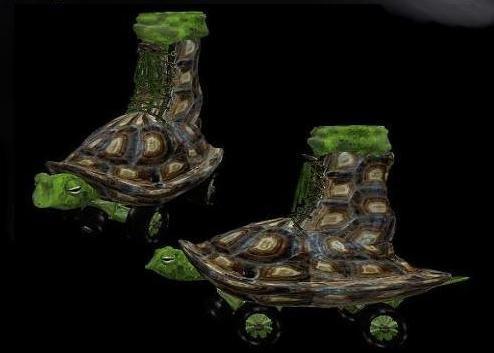 Roller Skates Turtle