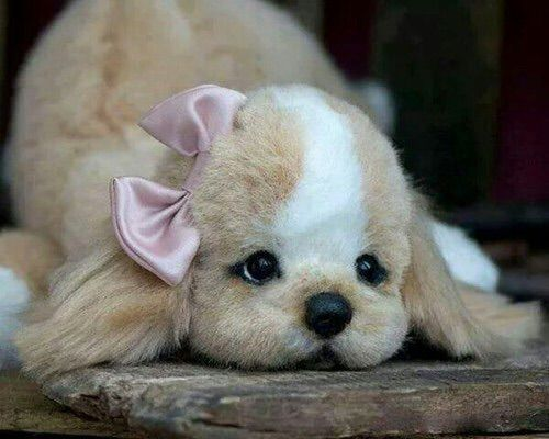 Image via We Heart It https://weheartit.com/entry/162271751 #animal #cute #dog #love #lovely #puppie