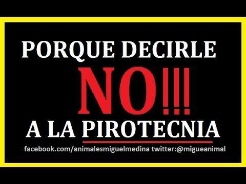 PORQUE DECIRLE NO A LA PIROTECNIA!!! para tener en cuenta compartan lo si están de acuerdo!!