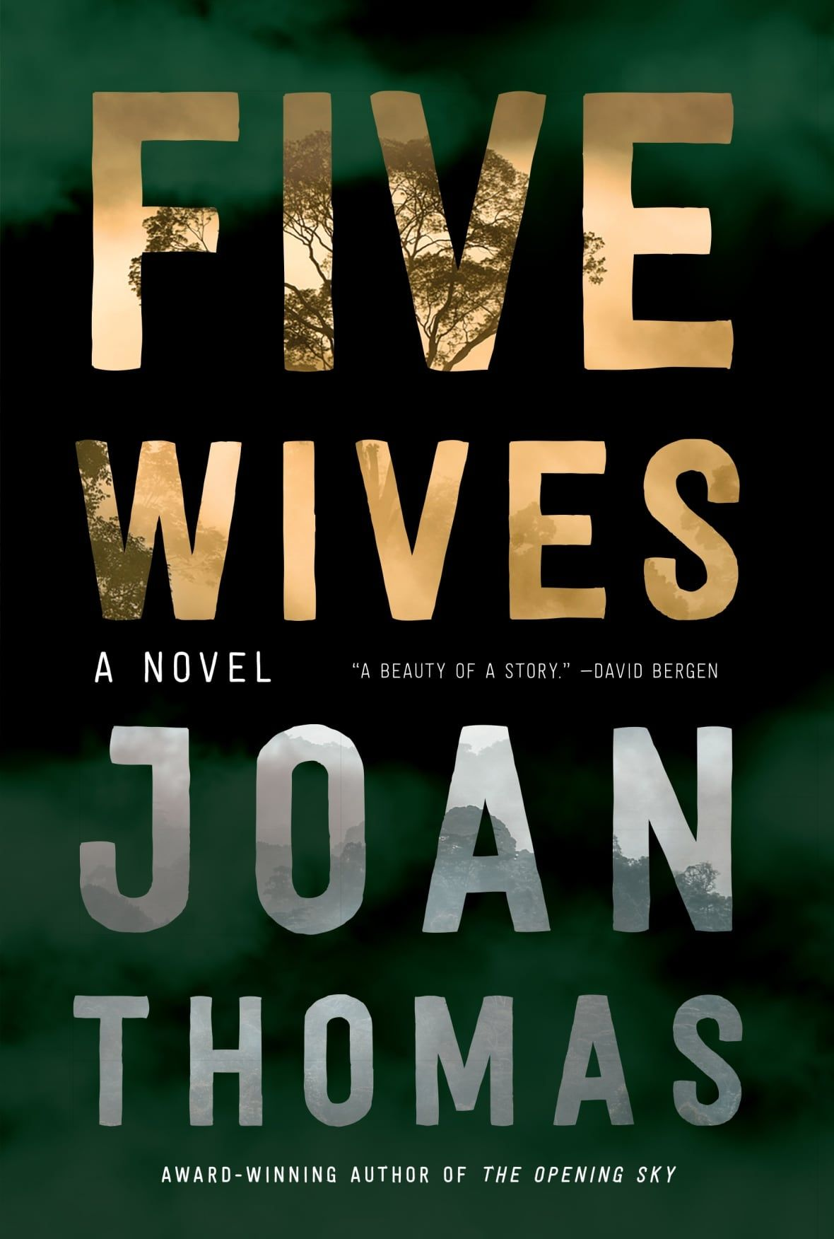 Five wives cbc books in 2020 book club books book