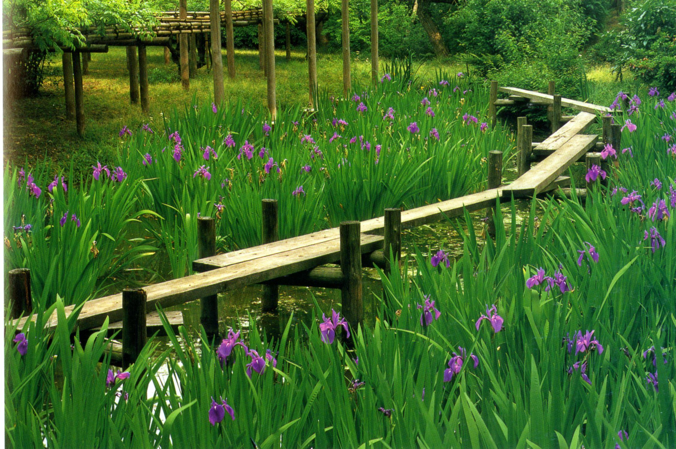 Conception D Un Jardin Japonais Un Plan D Taill Conception # Bordure De Jardin Green Park