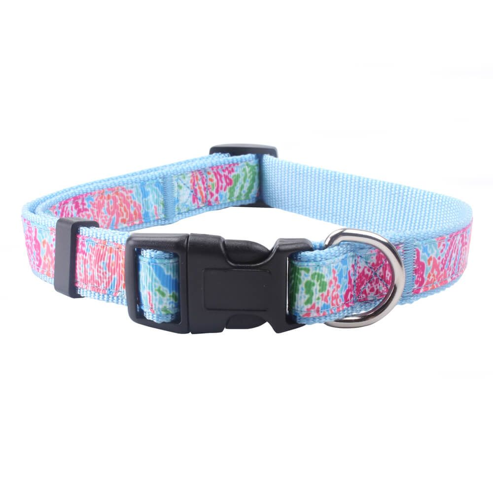 8fb54f5caccc Personalized Dog Collars: Hot sale nylon dog collars wholesale-qqpets