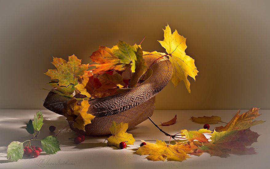 День, прекрасного осеннего дня картинки