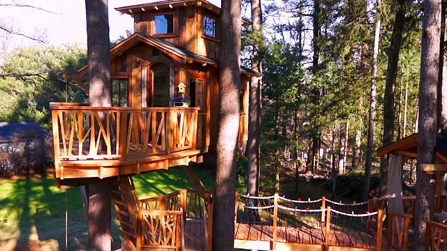 Treehouse Masters Canopy Clubhouse Animal Planet Treehouse