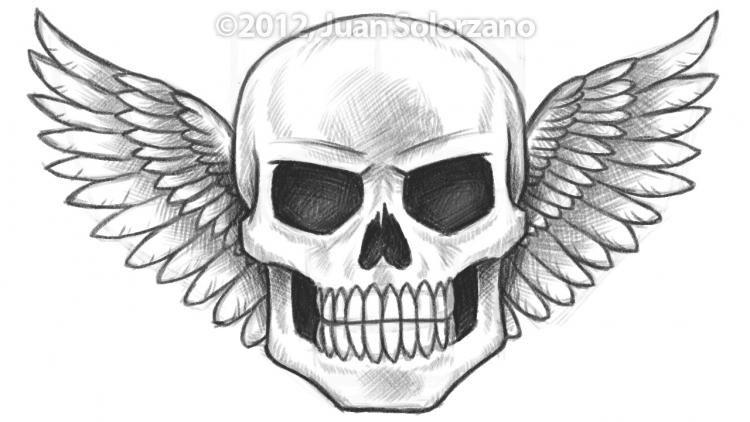 coolskulldrawings drawings of skulls with wings top