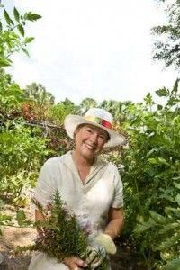 Retired Grandma Grows Profits In Her Herb Garden Plants Herb