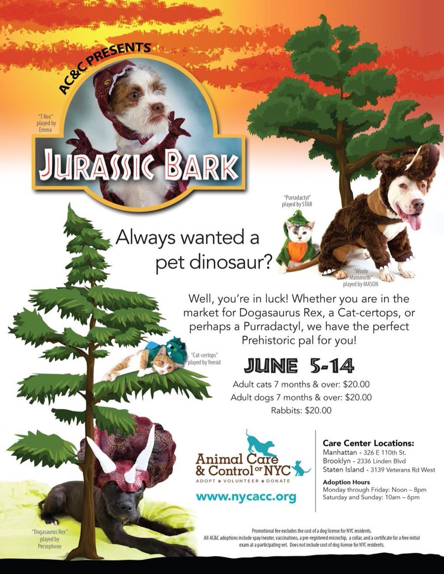 Jurassic Bark June 5th 14th All Cats Dogs Over 7 Months Will Be 20 00 Rabbits Of All Ages Will Be 20 00 Animal Care Pet Care Cat Years Pet Adoption