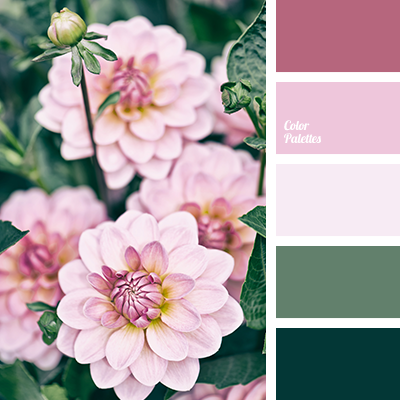 Pin by Carolyn on Botanical Tattoo References   Pinterest   Color ...