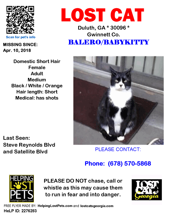 Lost Cat Duluth GA. April 10 2018 Closest Intersection