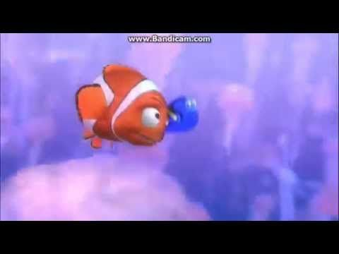dory just dosent learn does she lol youll never touch a jellyfish again eh dory lol!!!!