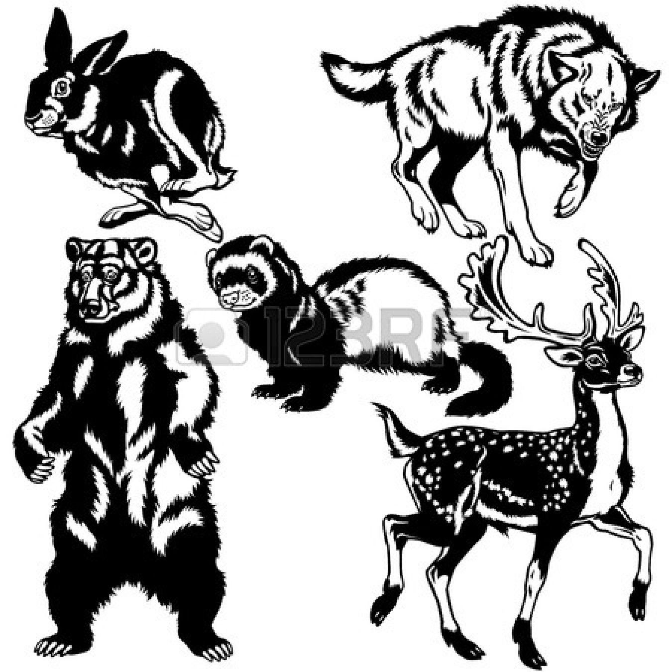 Forest Animals Clipart Black And White Pictures 5 HD