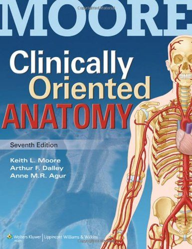 Download Clinically Oriented Anatomy 7th Edition pdf by Keith L ...