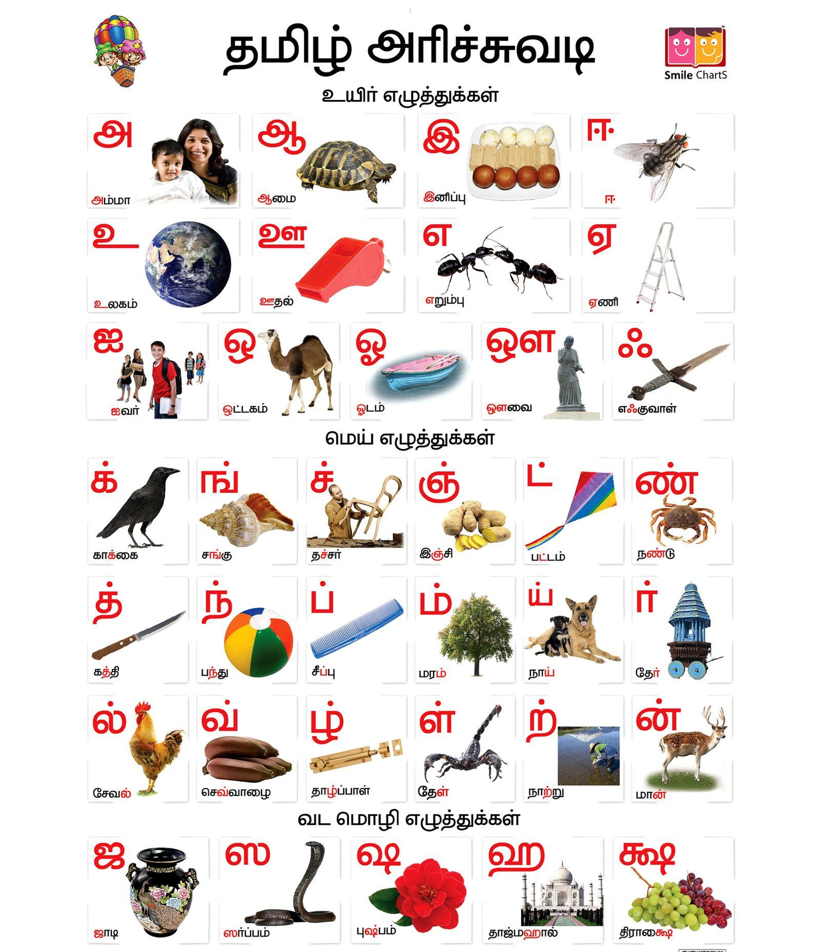 Tamil Alphabets Worksheets Printable Pictures