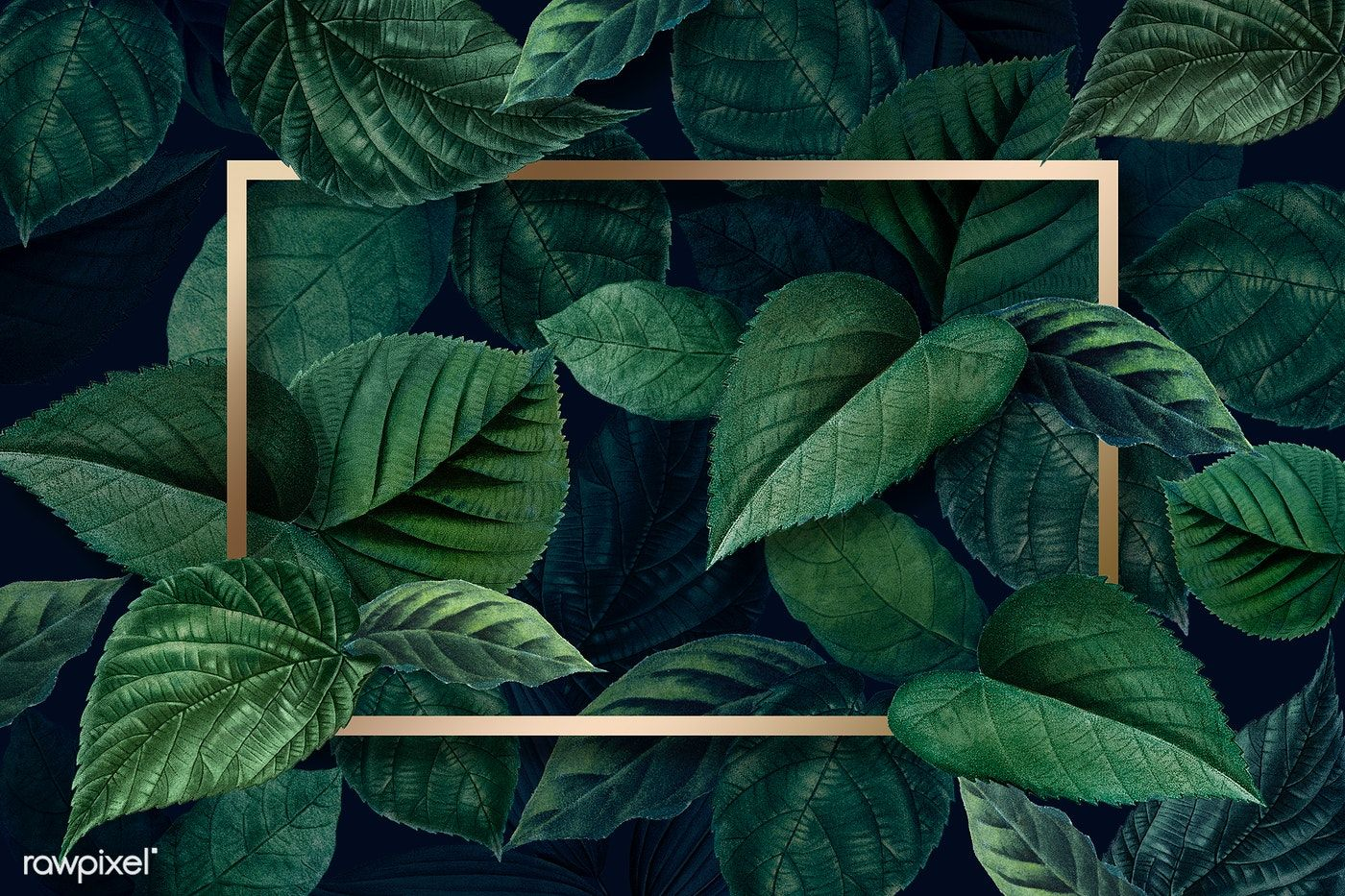 Download premium psd of Gold rectangle frame on a  metallic  green leaves