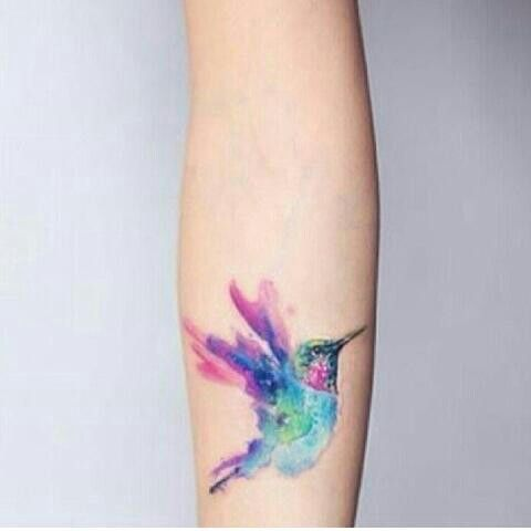 Colibri De Colores Colibri En Acuarela Tatuajes De Acuarela