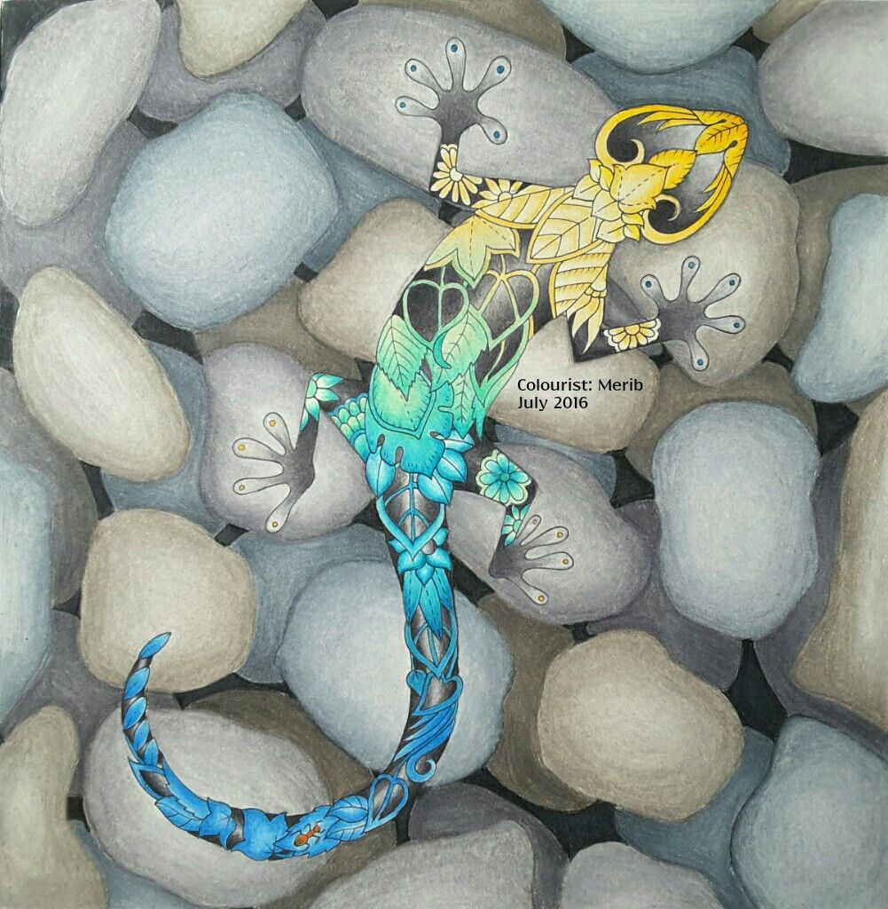 illustration by johanna basford book magical jungle colourist