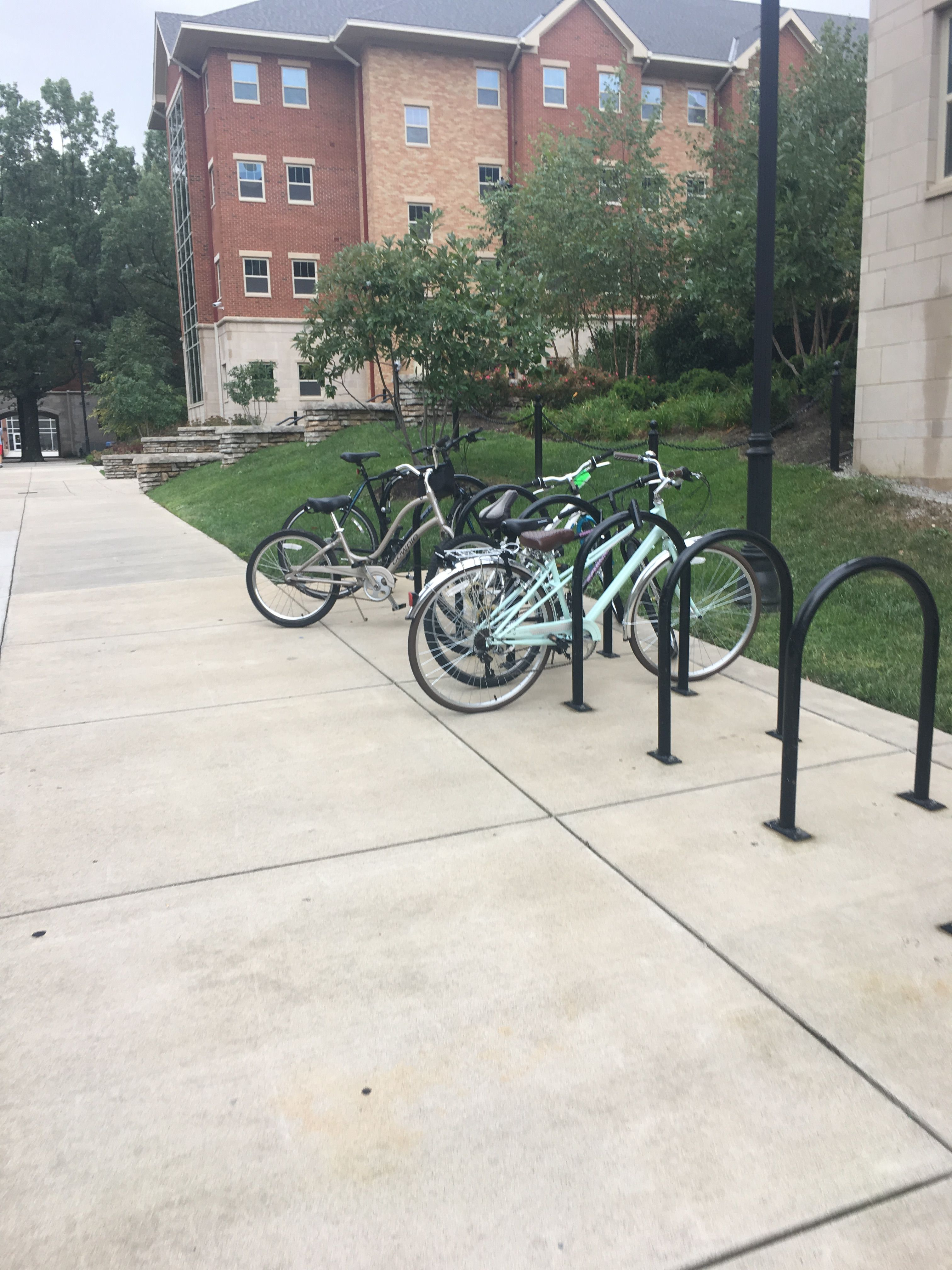I wonder how many bikes have been stolen on campus. Every time I walk past a bike rack they are all locked up. I also wonder why people would want to bring bikes to campus rather than just walk everywhere.