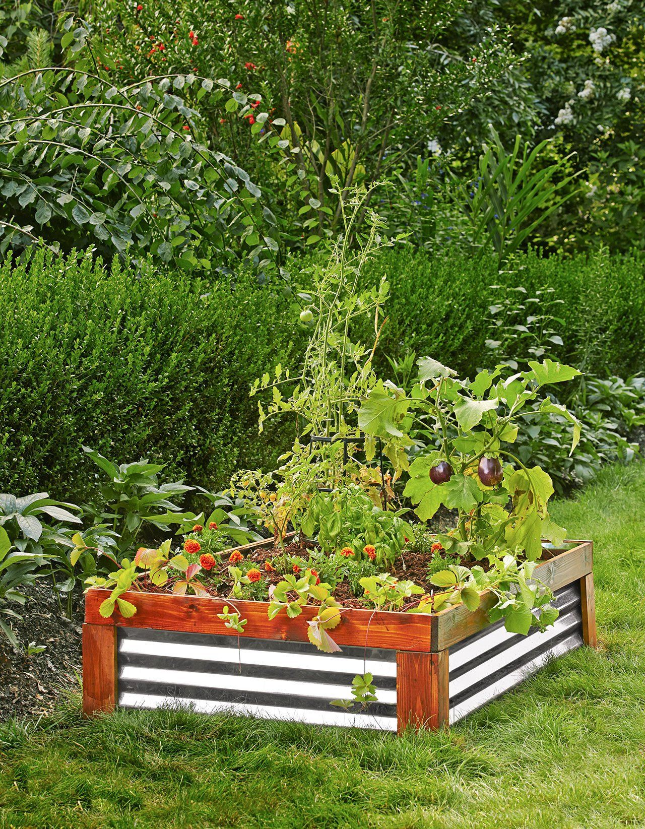 7 Reasons Why You Need a Raised Garden Bed (And How to