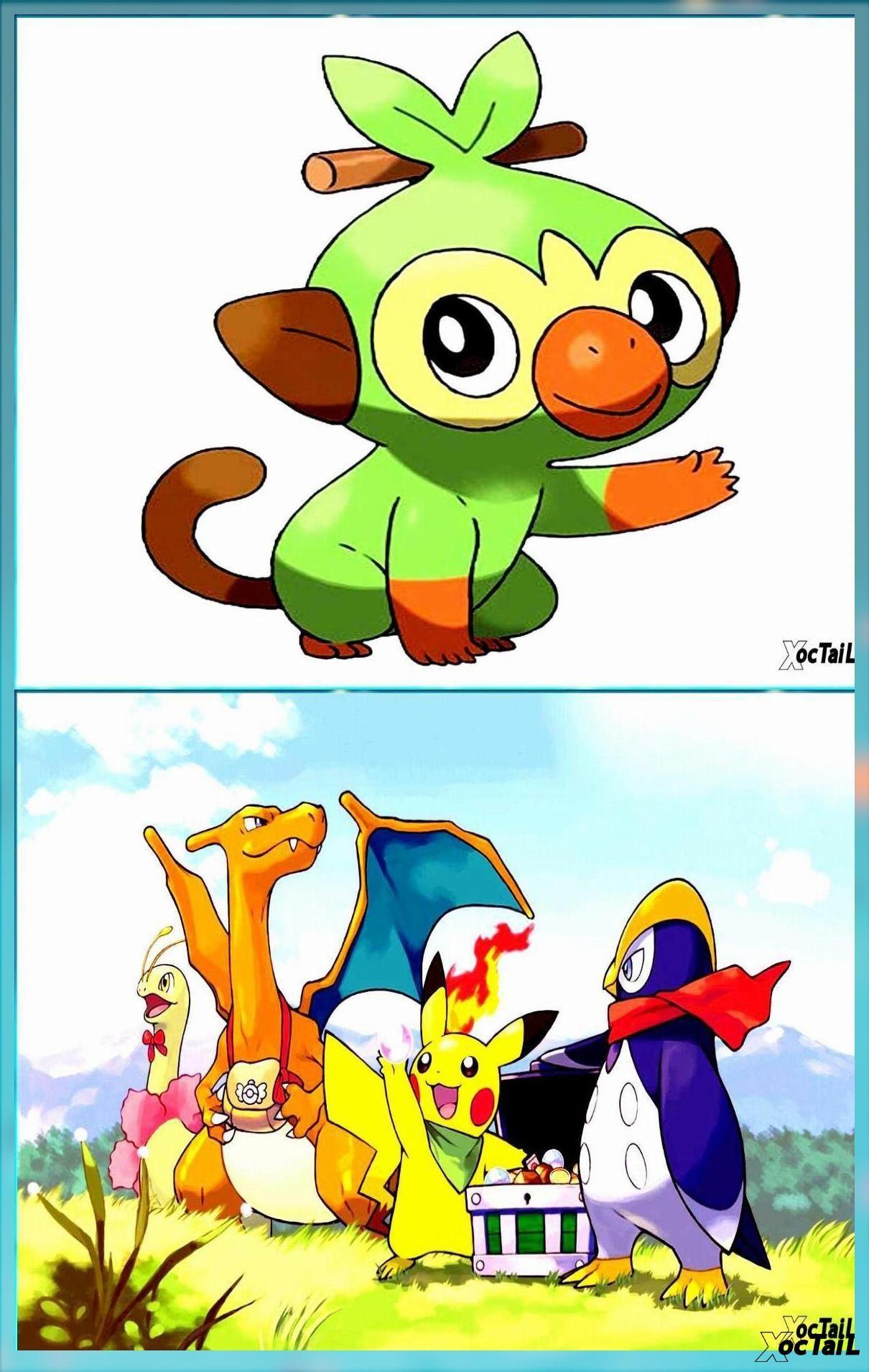 Check Out The Pokemon Sword And Shield Starter Evolutions Pokemon Anime Pikachu Wallpaper Hd Background Download Starter Evolutions Pokemon Pikachu Wallpaper