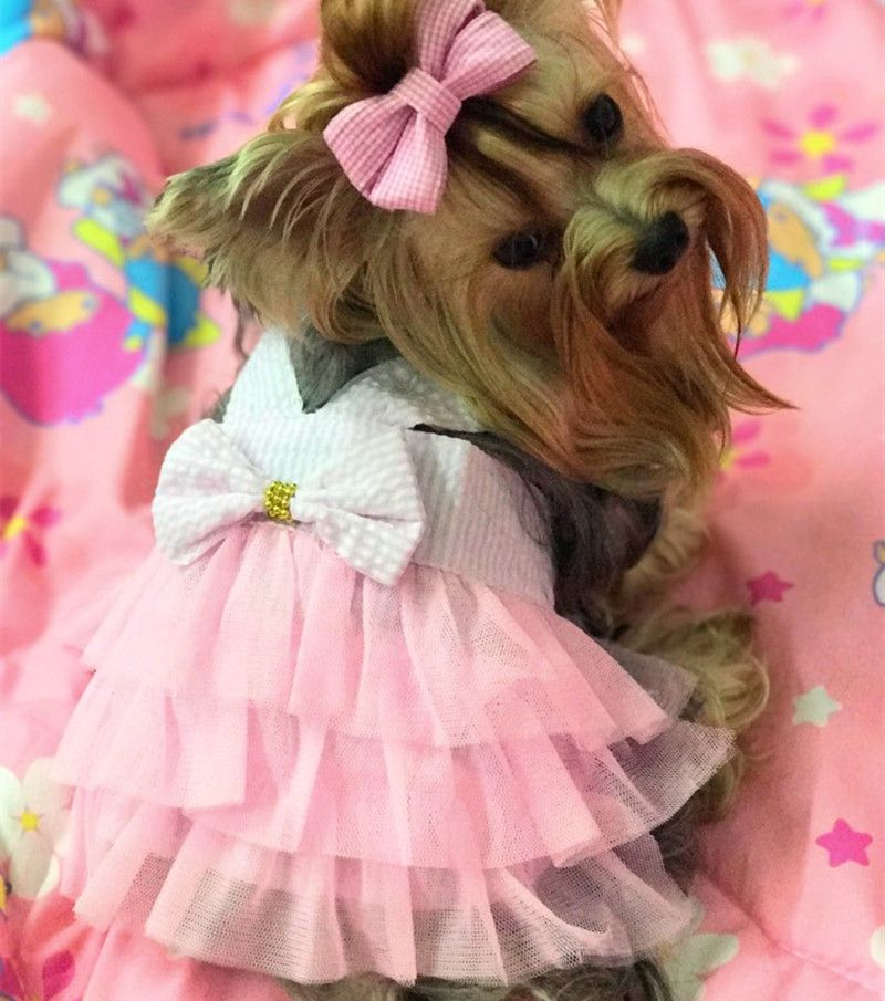 Summer Wedding Dog Dress Puppy Princess Skirt Cat Clothes for Small ...