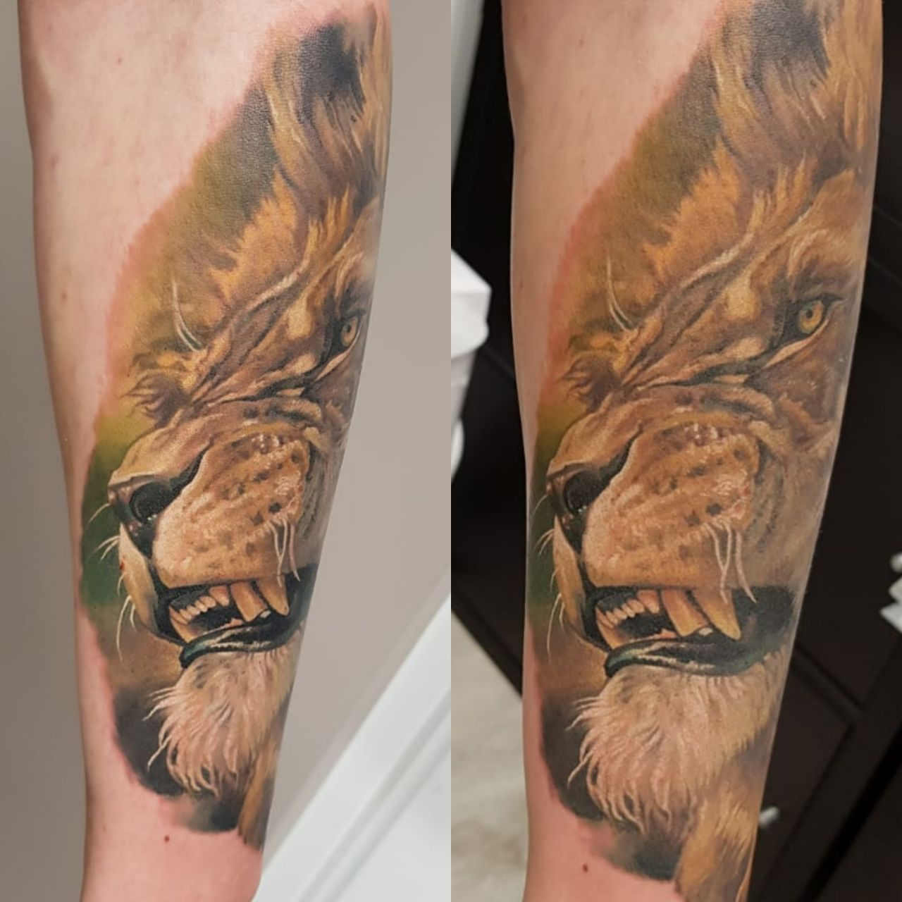 Realistic Color Lion Portrait Tattoo Made By Giena Revess A Traveling Tattoo Artist Sleeve Tattoo Tattoo Animal Tattoo Artists Sleeve Tattoos Color Tattoo