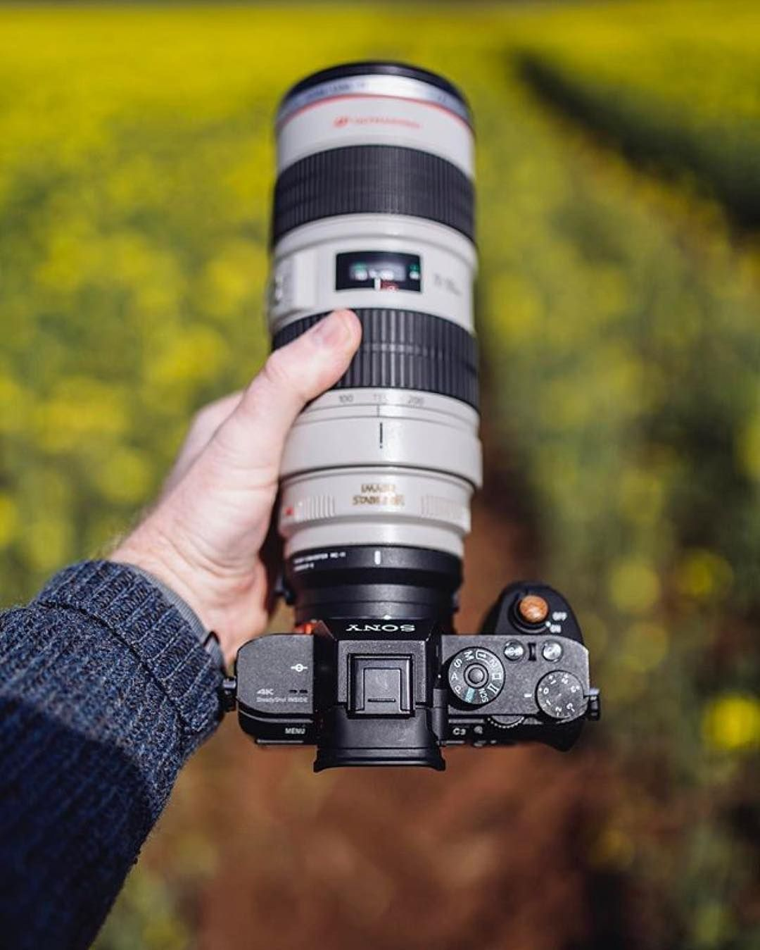 Lovely combo Sony A7RII Canon 70-200mm | Photo by @martinellardphoto ...