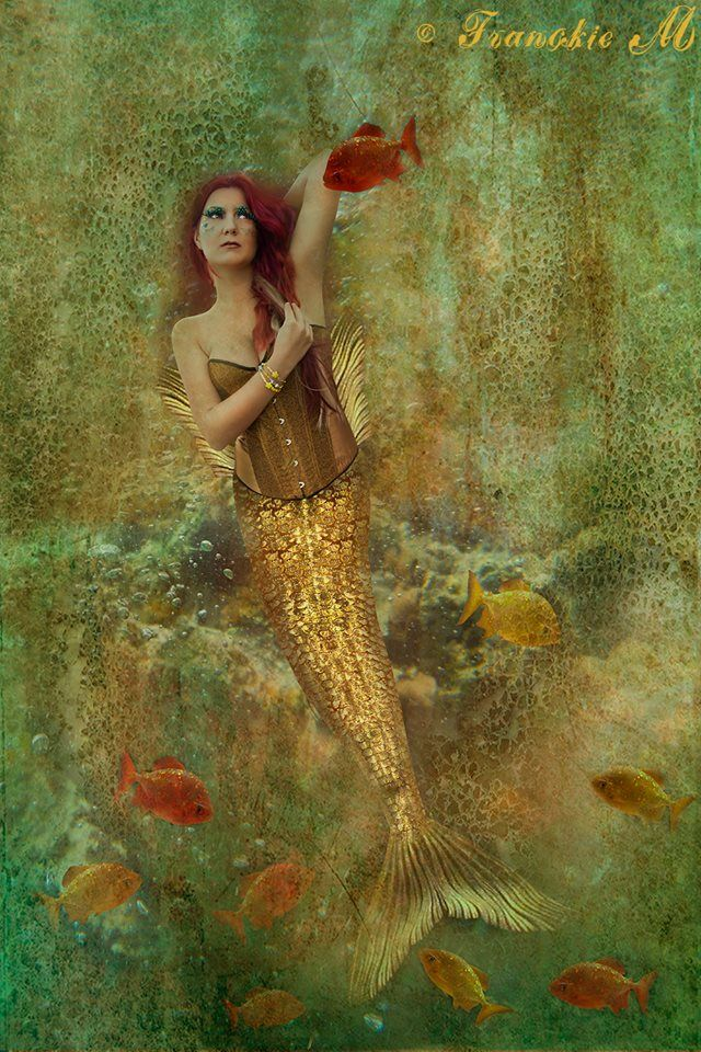 Explore real mermaids corsets and more