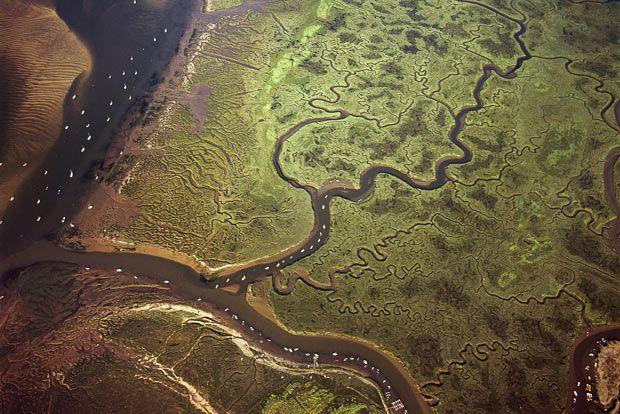 Morston Marsh, Norfolk