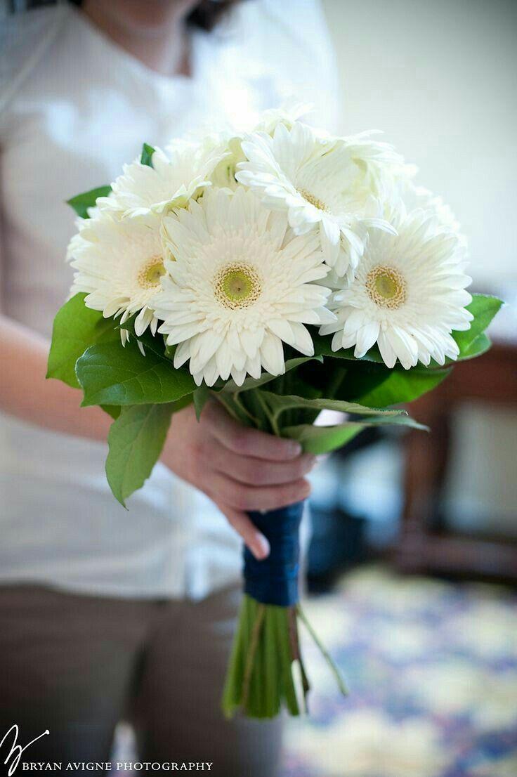 Свадебный букет белая герберы фото, москва карте доставка