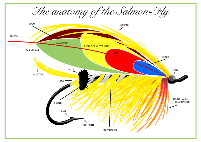 The anatomy of the salmon fly - a naming of parts. Go to http://www ...