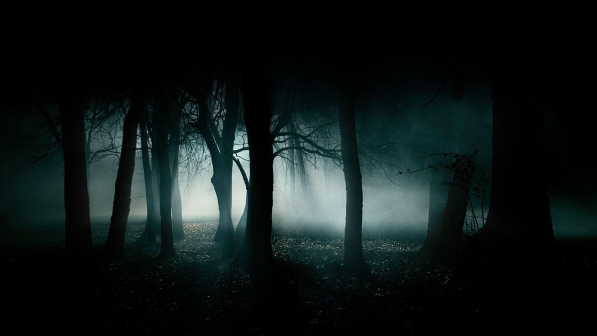 10 Top Dark Hd Wallpapers 1920x1080 Full Hd 1920 1080 For Pc Desktop Forest Wallpaper Haunted Forest Dark Wallpaper