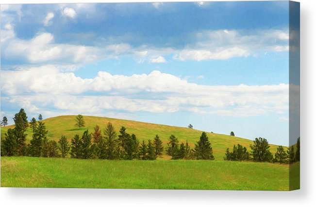 Custer State Park South Dakota Meadow Painterly Canvas Print by Joan Carroll. All canvas prints are professionally printed, assembled, and shipped within 3 - 4 business days and delivered ready-to-hang on your wall. Choose from multiple print sizes, border colors, and canvas materials.  The Effective Pictures We Offer You About brookings South Dakota   A quality picture can tell you many things. You can find the most bea... #South Dakota Funny #South Dakota Ghost Towns #South Dakota Outline