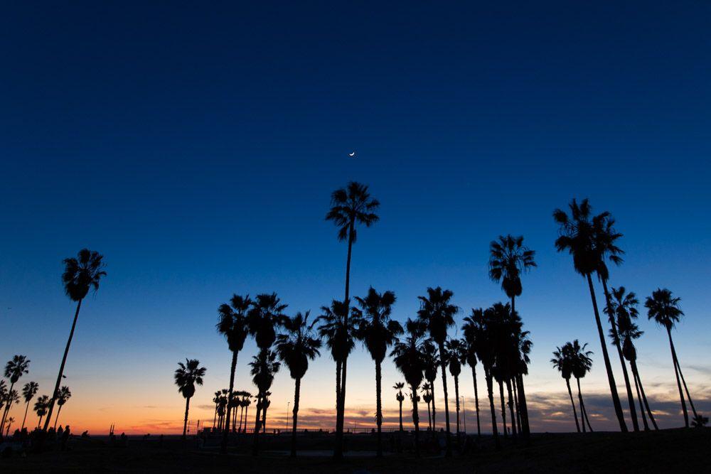 Travel Los Angeles California Emma Mullins Photography Venice Beach Photography Beach Silhouette Venice Beach